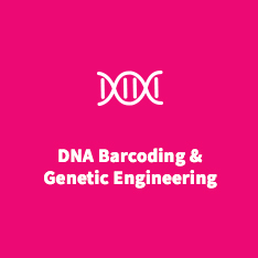 DNA Barcoding & Genetic Engineering